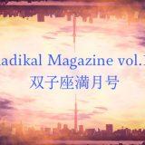 保護中: Radical Magazin vol.17 双子座満月号
